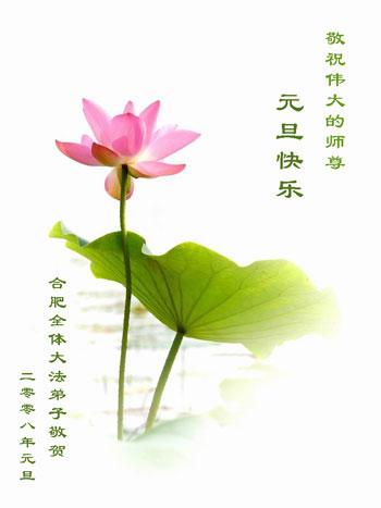 Все ученики Фалуньгун г.Хэфэй поздравляют уважаемого Учителя с Новым годом!