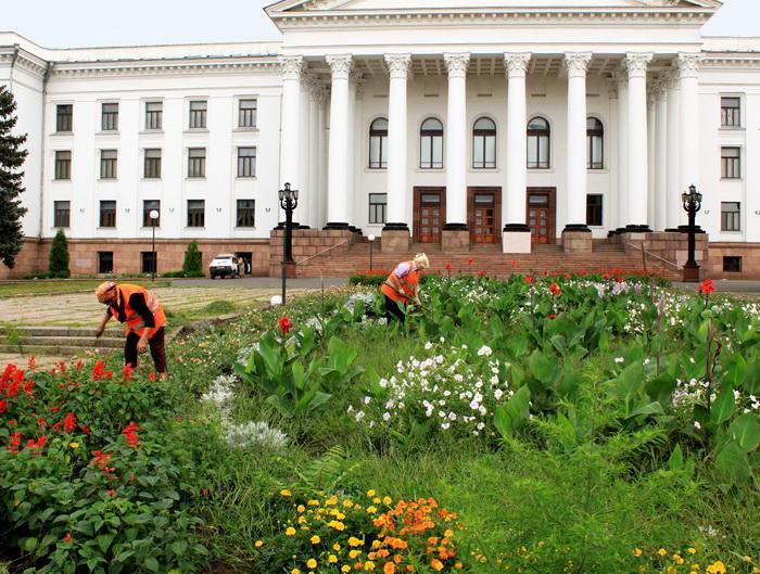 Убока газонов. Фото: Ирина Рудская