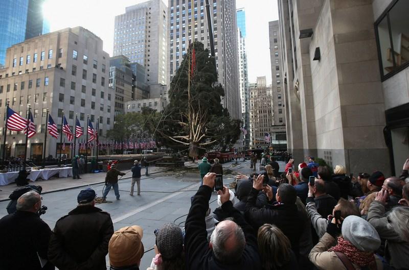 Нью-Йорк, США, 14 ноября. В Рокфеллеровском центре устанавливается рождественская ёлка весом 10 тонн, доставленная из Норвегии. Фото: John Moore/Getty Images