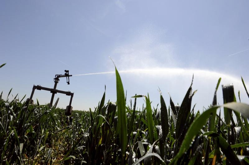 Поле кукурузы, пострадавшее от засухи поливают 5 мая 2011 года во французской деревне Гренай, недалеко от Лиона. По данным французского национального доклада о погоде компании Метео Франс, апрель 2011 года стал одним из самых засушливых месяцев с 1959 го