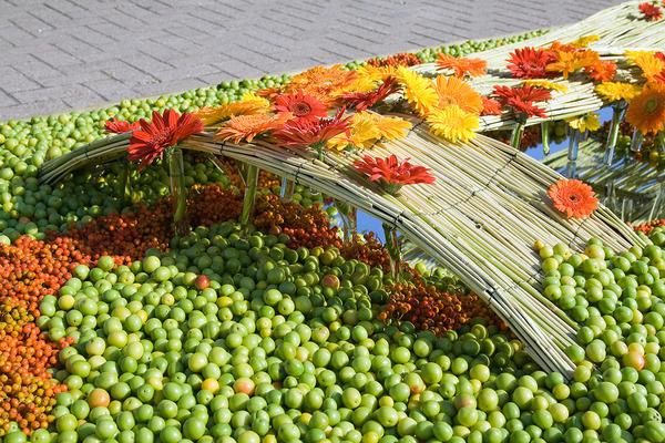 Фестиваль цветущего искуcства в Вентспилсе. Фото Андрея Аболтиньша