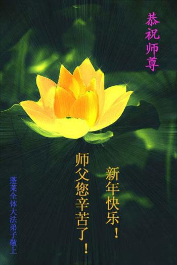 Все ученики Фалуньгун г.Пэнлай поздравляют уважаемого Учителя с Новым годом!