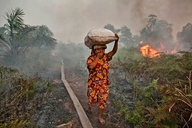 Острів Суматра, Індонезія, 27 червня. Жінка намагається захистити себе від диму. Довготривалі лісові пожежі на Суматрі шкодять не тільки місцевим жителям, але й населенню Малайзії та Сінгапуру. Фото: Ulet Ifansasti/Getty Images