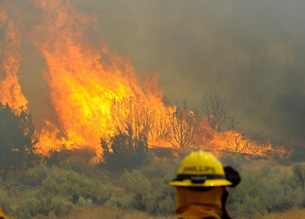Пожежі лютують у Каліфорнії. Фоторепортаж. Фото: Kevork Djansezian / Getty Images