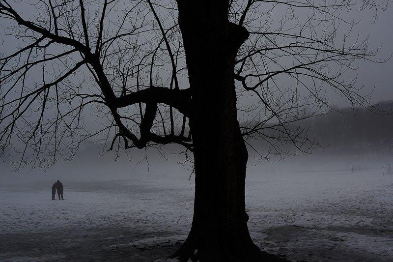 Нью-Йорк, США, 11 февраля. Потепление вместе с дождями, последовавшими за сильным снегопадом, привели к образованию густого тумана в Новой Англии. Фото: Spencer Platt/Getty Images