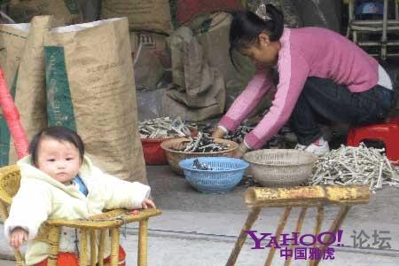 В этих районах очень высокий процент детей с отравлением свинцом. Район города Шаньтоу провинции Гуандун. Фото с aboluowang.com
