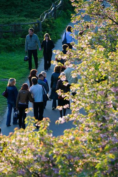 Ботанический сад в Киеве. Фото: The Epoch Times