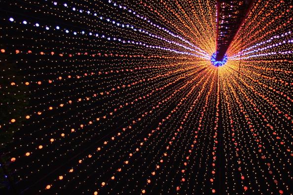 Рождественская елка, состоящей из светящихся проводов в Окленде, столице Новой Зеландии. Фото: Phil Walter/Getty Images