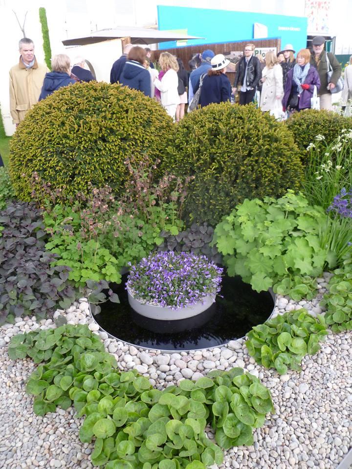 Сад «Перший дотик» від госпіталю Сент-Джордж (Лондон) на виставці квітів у Челсі. Ідея саду — розвиток життя в його найрізноманітніших формах. Фото: rhschelsea/facebook.com