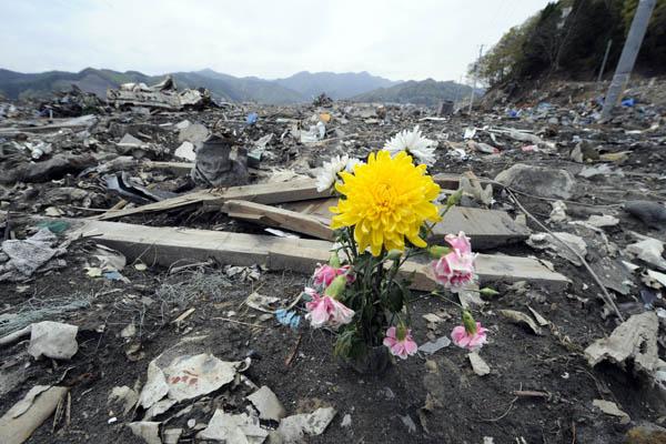 Рядом с восточным побережьем Хонсю, Япония, 2011. Фото: TOSHIFUMI KITAMURA/AFP/Getty Images