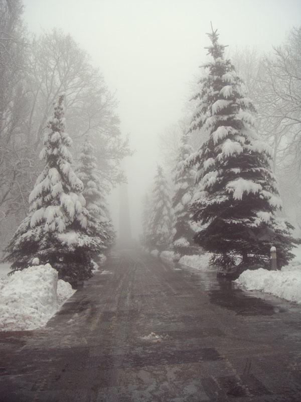 Київ оповив туман. Фото: Аліна Маслакова/Велика Епоха