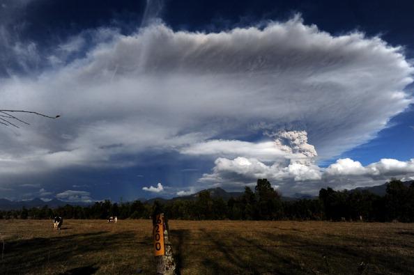 Облако пепла, извергаемого вулканом Пуйеуэ. Фото: CLAUDIO SANTANA/AFP/Getty Images