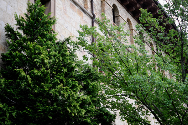 Історія всієї Наварри пов'язана з монастирем Сан-Сальвадор-де-Лейре. Фото: Carlos Alvarez/Getty Images