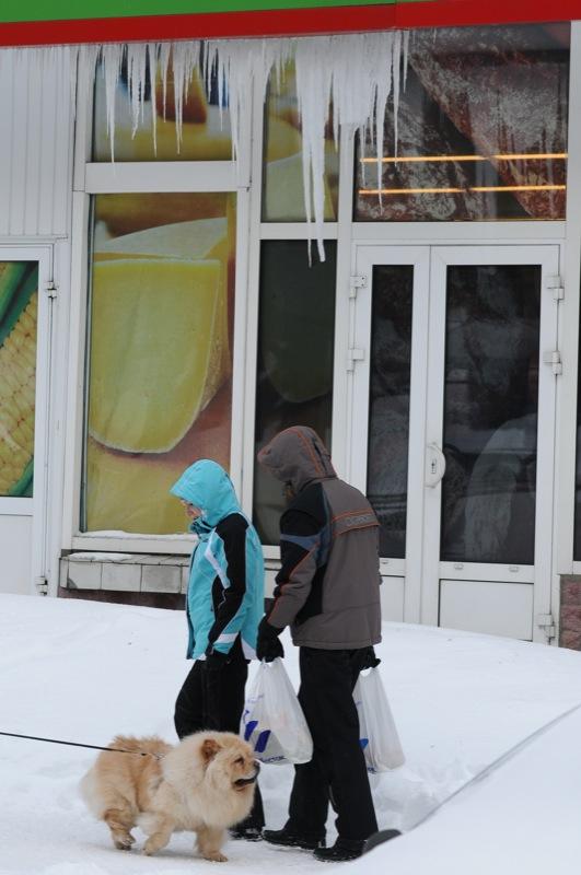 Заснеженный Киев. Фото: Владимир Бородин/Великая Эпоха