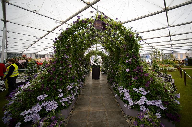 Експозиція садів у Великому павільйоні на виставці квітів у Челсі. Фото: Ben A. Pruchnie/Getty Images