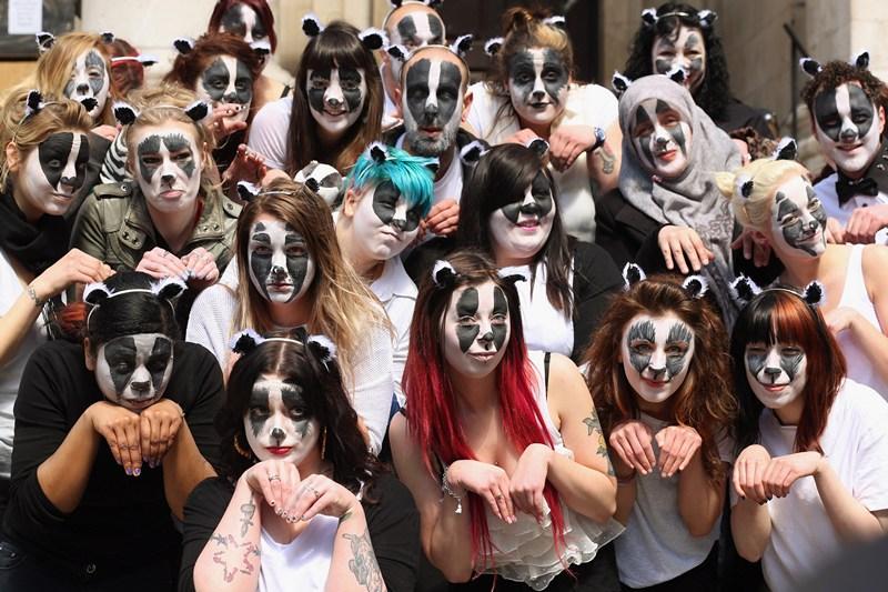 Лондон, Англия, 1 мая. Защитники природы протестуют против планов правительства, нацеленных на снижение популяции барсуков. Фото: Oli Scarff/Getty Images