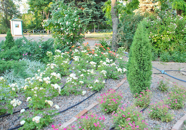 Оранжерея цветов на Монастырском острове. Фото: Елена Колодина/The Epoch Times Украина