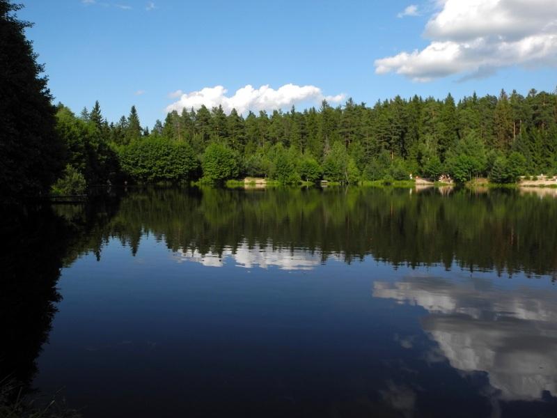Лісове озеро в Кіржачі. Фото: Алла Лавриненко/Велика Епоха