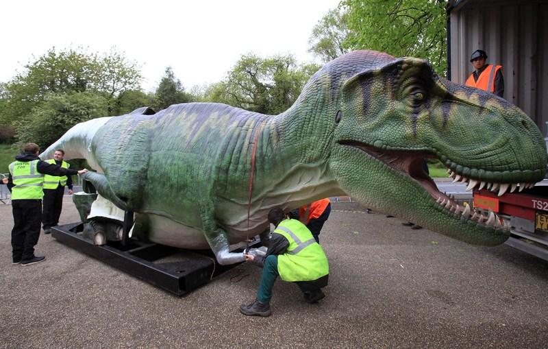 Брістоль, Англія, 14травня. До місцевого зоопарку з США прибули 12повнорозмірних скульптур-копій динозаврів, здатних видавати звуки і рухатися. Динозаври стануть частиною виставки DinoZoo, яка відкриється в кінці травня. Фото: Matt Cardy/Getty Images