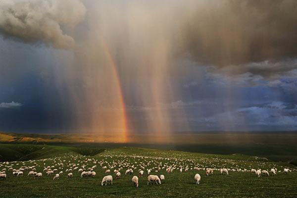 Удивительное зрелище на высокогорье. Фото: epochtimes.com