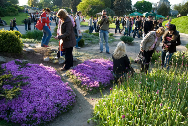 Ботанічний сад у Києві. Фото: The Epoch Times