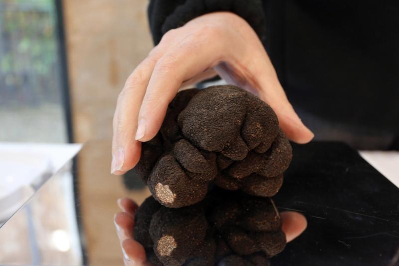 Сент-Альвер, Франція, 3грудня. Перші перигорські, або «чорні», трюфелі цього року з'явилися на ринку делікатесів. Фото: NICOLAS TUCAT/AFP/Getty Images