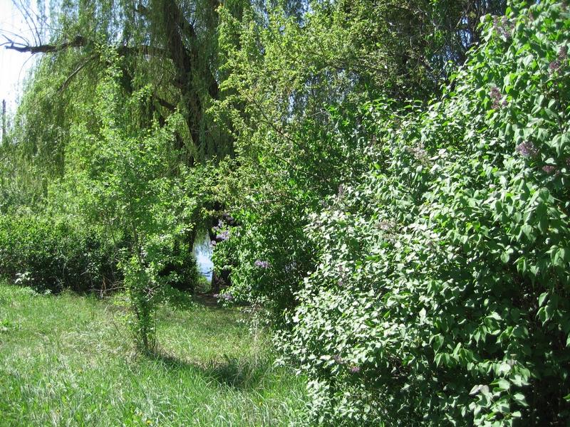 З правого боку каньйону знаходяться занедбані сади. Фото: Мілостнова Росіна/The Epoch Times України