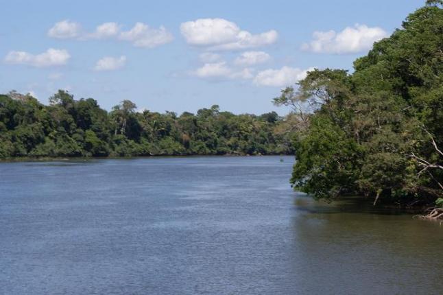 Найдовша річка у світі, Амазонка. Фото: Eduardo Rizzo/The Epoch Times En Espanol