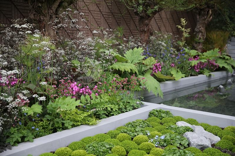 Фрагмент саду «Незабудка» на виставці квітів у Челсі. Фото: Chris Jackson/Getty Images