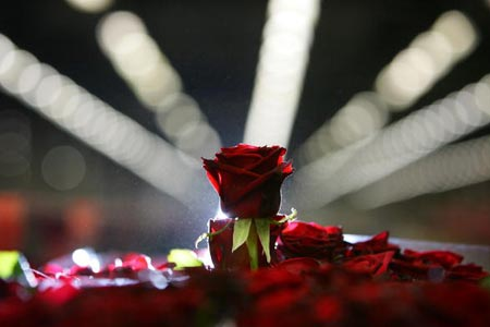 Розы на самом большом в мире аукционе цветов и растений в городе Алсмеере, Нидерланды (Aalsmeer, Netherlands). Фото: Christopher Furlong/Getty Images