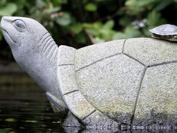 Статуя черепахи в пруду в Glover Garden. Фото: Kiyoshi Ota / Getty Images)