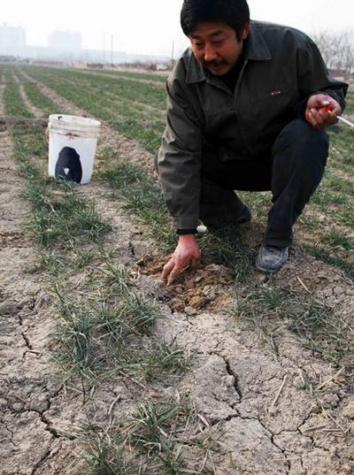 Засуха в Китае. Январь 2011 год. Фото с kanzhongguo.com