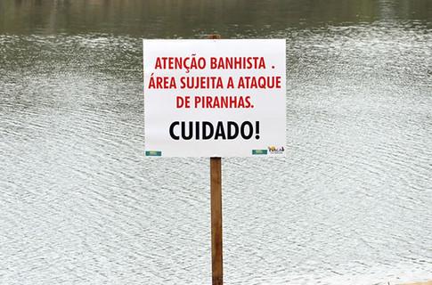 На бразильських пляжах на туристів нападають піраньї. Фото: G1