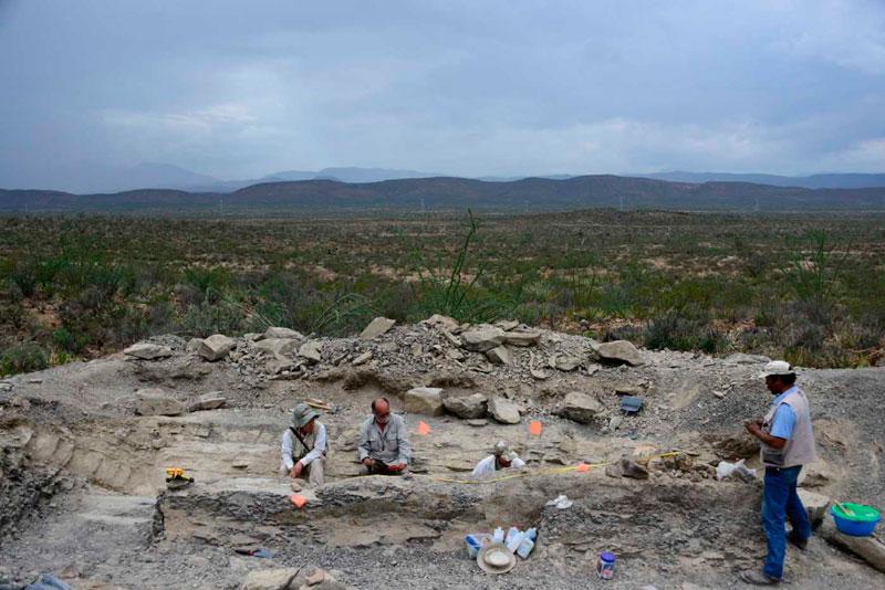Скам'янілі останки хвоста динозавра розкопали в Мексиці. Фото: Mauricio Marat/INAH