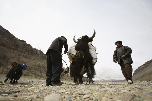 Протягом тисячоліть гора Кайлас вважається священною у всіх народностей. Фото: China Photos / Getty Images