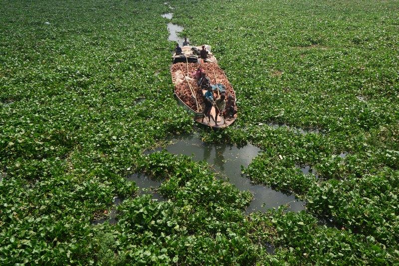 Бангладеш, 23 сентября. Лодочник управляет гружёной кирпичом баржой на реке Буриганга. Фото: MUNIR UZ ZAMAN/AFP/GettyImages