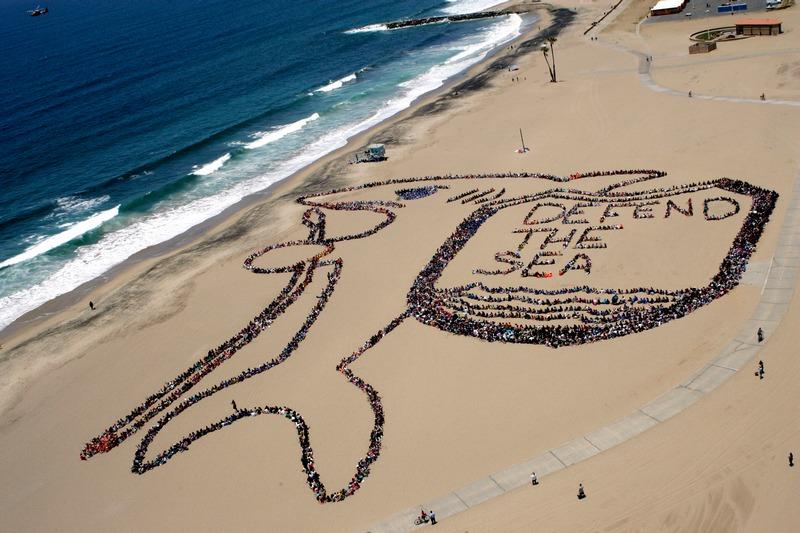 Лос-Анджелес, США, 7червня. Понад 5000дітей, вчителів та добровольців утворили величезний контур акули і напис «Врятуємо океан» в рамках 19-го дитячого дня захисту океану від побутового сміття. Фото: Lou Dematteis/Spectral Q via Getty Images