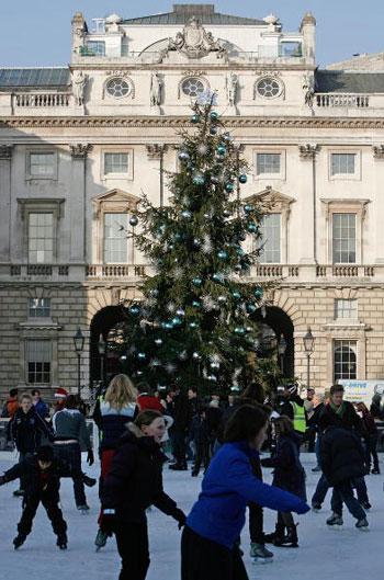В Лондоне установили рождественскую елку. Фото: Cate Gillon/Getty Images