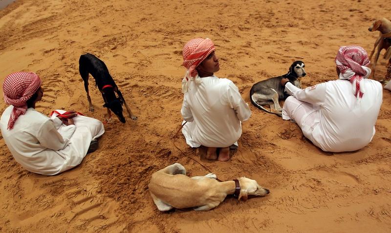 Абу-Дабі, ОАЕ, 7вересня. Арабські юнаки з перськими хортами породи «салюки» на Міжнародній виставці полювання і верхової їзди. Фото: KARIM SAHIB/AFP/GettyImages
