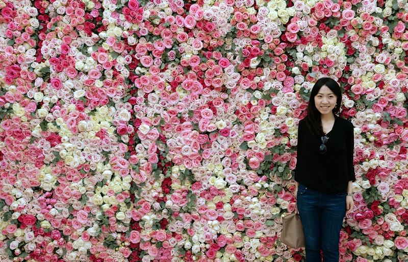 Париж, Франція, 2 червня. Стіна з троянд прикрасила виставку садівників в саду Тюїльрі. Фото: PIERRE ANDRIEU/AFP/Getty Images