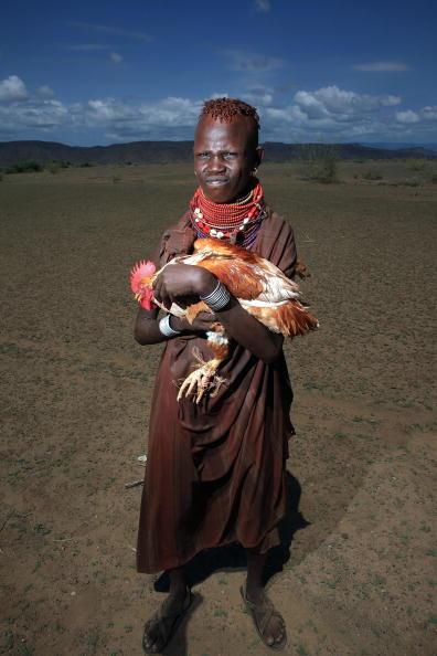 Девушка из отдаленного племени Теркана в северной части Кении пытается продать семейную курицу фотографу за 100 кенийских шиллингов, приблизительно 1,5 доллара в деревне Качода. Фото: Christopher Furlong/Getty Images