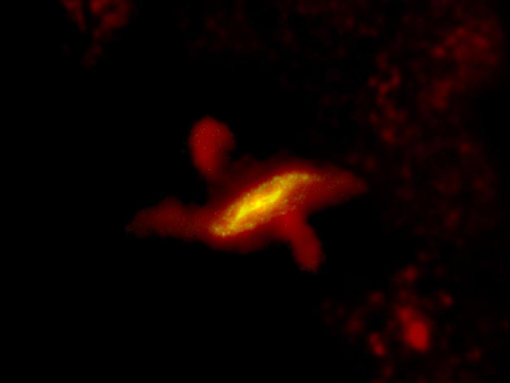 Галактика Центавр А. В ярко-жёлтой области происходят активные процессы образования звёзд. Также хорошо видны облака холодной пыли, выброшенные далеко за пределы галактики чёрной дырой в центре. Фото: ESA/Herschel/PACS/SPIRE/C.D. Wilson