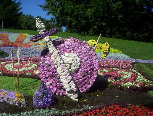 В столице состоялась 52-я городская выставка цветов. Фото: Анна Варавва/Великая Эпоха