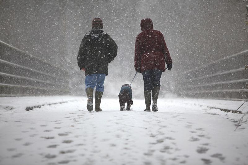 Кроли, Великобритания, 11 марта. На юге страны — сильные снегопады. Фото: Jordan Mansfield/Getty Images