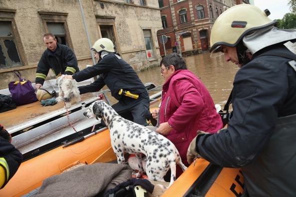 Спасатели перевозят хозяйку с собакой из центра города Цайц, Германия. Фото: Sean Gallup / Getty Images