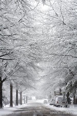 Сніжний пейзаж. Витвір природи. Фото: Чан Лей/Велика Епоха