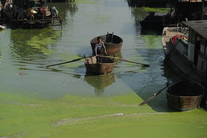 Озеро Чаоху в Китаї, 2013 рік. Фото: STR/AFP/Getty Images