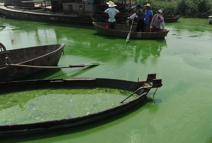 Озеро Чаоху в Китаї, 2012 рік. Фото: STR/AFP/Getty Images