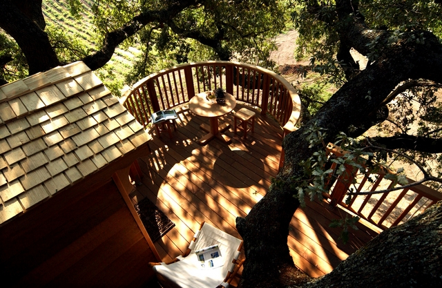 Домик на дереве Suite Blue. Фото: hqroom.ru