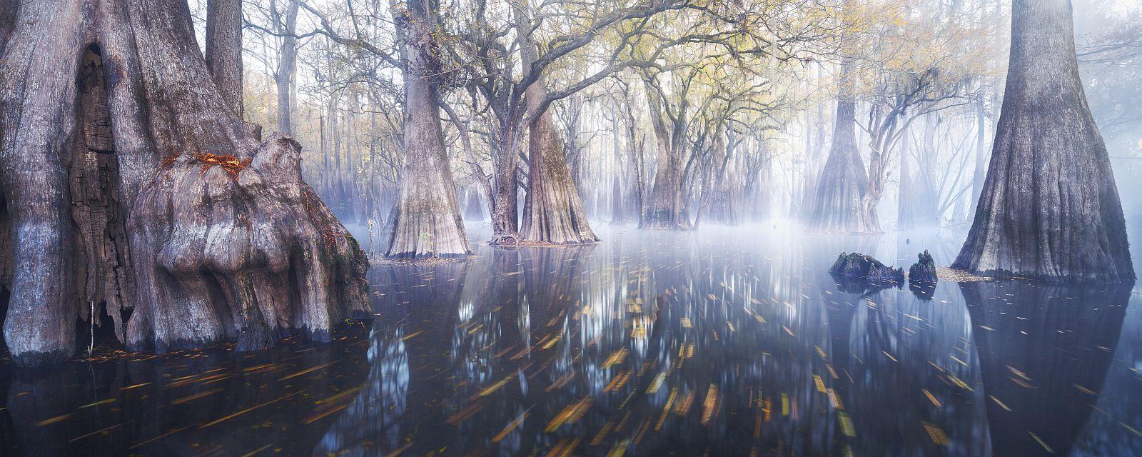 «Дагоба». Третье место в номинации «Fine art landscape». Фото: Paul Marcellini